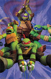 Teenage Mutant Ninja Turtles TMNT - Team Print