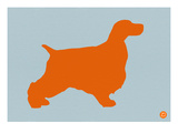 Springer Spaniel Orange Poster by  NaxArt