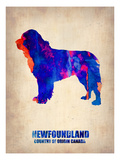 Newfoundland Poster Art by  NaxArt