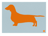 Dachshund Orange Posters by  NaxArt
