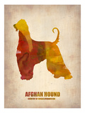 Afghan Hound Poster Art by  NaxArt
