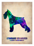 Standard Schnauzer Poster Posters by  NaxArt