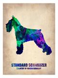 Standard Schnauzer Poster Prints by  NaxArt