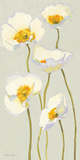 White on White Poppies Panel II Prints by Shirley Novak