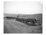 Horses Pulling Wheat Wagons, 1915 Giclee Print by Ashael Curtis