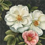 Floral Damask III Prints by Lisa Audit