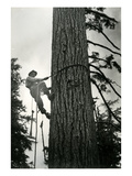 Logger Climbing Tree, ca. 1947 Giclee Print by K.S. Brown