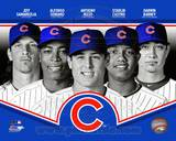 Chicago Cubs 2013 Team Composite Photo
