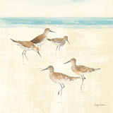 Sand Pipers Square I Poster par Avery Tillmon