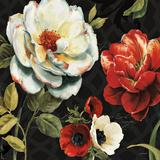 Floral Story IV on Black Prints by Lisa Audit