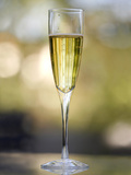 Flute of Champagne Photo by Katano Nicole