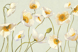 White and Bright Poppies Posters par Shirley Novak