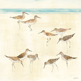 Sandpipers Poster by Avery Tillmon