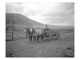 Horse-Drawn Wagon on Ranch, Near Priest Rapids, Yakima County, WA, 1915 Giclee Print by Ashael Curtis