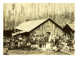 Camp 5, St. Paul Tacoma Lumber Co., ca. 1900 Giclee Print