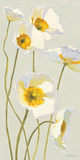 White on White Poppies Panel I Prints by Shirley Novak