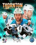 Joe Thornton 2013 Portrait Plus Photo