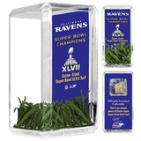 Super Bowl XLVII Desktop Game-Used Turf Framed Memorabilia