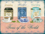 Teas of the World Blechschild