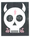 Punk Skull Serigraph by  Print Mafia