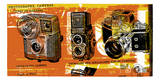 Types of Cameras Serigraph by  Print Mafia
