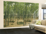 Bambuswald laminiertes Wandgemälde Fototapete Wandgemälde