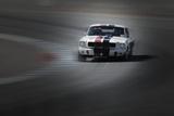Mustang on the racing Circuit Foto von  NaxArt