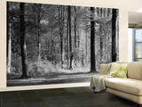 Mystical Forest Huge Wall Mural Poster Print Wall Mural