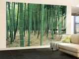 Bambuswald laminiertes Wandgemälde Fototapete Fototapeten