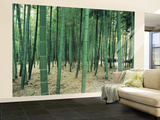 Bamboo Forest Huge Wall Mural Poster Print Wall Mural