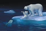 Coca-Cola - polar bear swim Poster