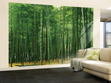 Bamboo Plantation Huge Wall Mural Poster Print Wallpaper Mural