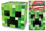 Minecraft - Creeper Head Careta
