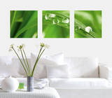 Crystal Clear Water Drops Autocollant mural par . Design Team