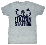 Rocky - Classic Stallion Shirts