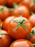 Fresh Tomatoes Fotografisk tryk af Greg Elms