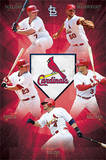 St Louis Cardinals Team Baseball Poster Print