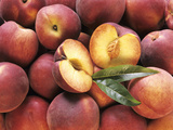 Many Whole Peaches with One Halved Photographic Print