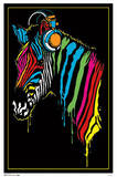 Zebra Headphones Blacklight Poster Posters