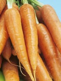 Fresh Carrots Photographic Print by Linda Burgess