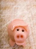 A Marzipan Pig Photographic Print by Robert Kneschke