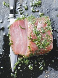 Marinated Tuna with Herbs Photographic Print
