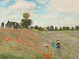 Poppy Field, Near Argenteuil, c.1873 高品質プリント : クロード・モネ