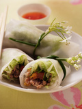 Filled Rice Paper Rolls from Vietnam Photographic Print