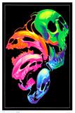 Liquid Skulls Fantasy Blacklight Poster Posters