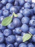 Blueberries Photographic Print by Vladimir Shulevsky