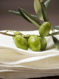 Olive Sprig with Green Olives on Linen Cloth Photographic Print