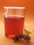 Rose Hip Tea in Glass Cup, Sprig of Fresh Rose Hips Photographic Print