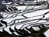 Reflections Off Water Filled Rice Terraces, Yuanyang County, Honghe, Yunnan Province, China Fotodruck von Peter Adams