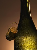 Champagne Bottle with Cork Photographic Print by Joerg Lehmann